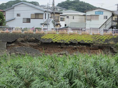 金目川 災害復旧工事 工事前