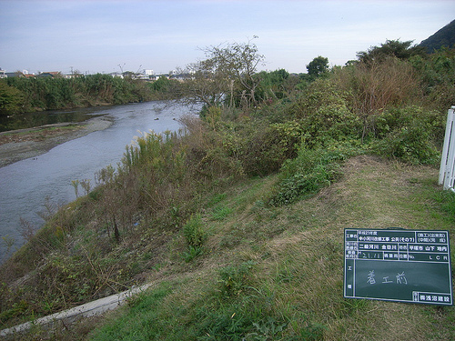 金目川 河川改修工事 工事前