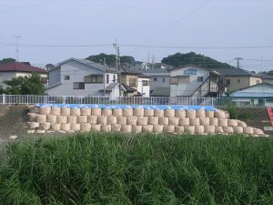 金目川 災害復旧工事 工事後